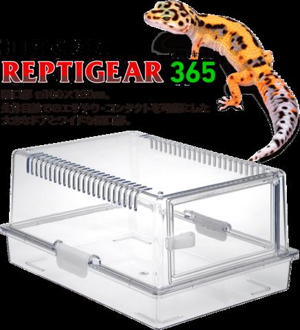 レプティギア365