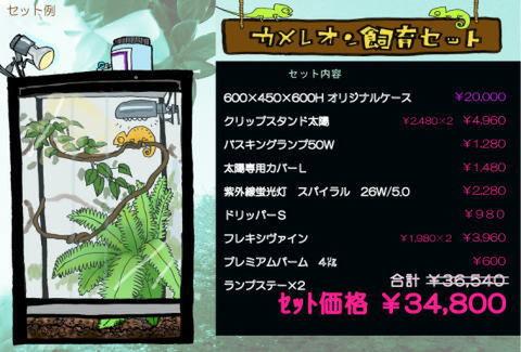 カメレオン/樹上棲飼育セット 【60×45×60】