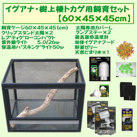 イグアナ/樹上棲トカゲ用飼育セット 【60×45×45】