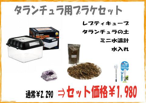 タランチュラ/サソリ用 プラケセット