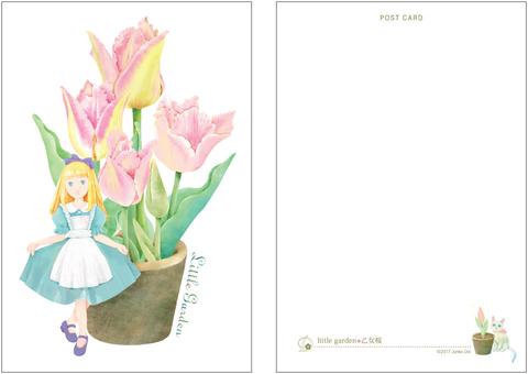 little garden◆乙女桜