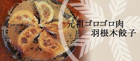 元祖ゴロゴロ肉羽根木餃子