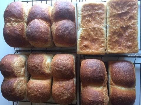 角食パン (1本)