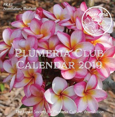 【Plumeria Club公認】2019年版プルメリアカレンダー 'Plumeria in the World 2019' 卓上版(ゆうパケットにて発送)