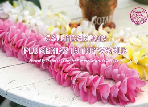 【Plumeria Club公認】2019年版プルメリアカレンダー 'Plumeria in the World 2019' A3版(ゆうパケットにて発送)