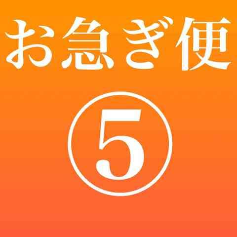 【オプション】お急ぎ便5