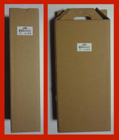 ジュース用シンプルギフトボックス(1本用/2本用)