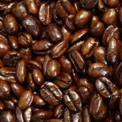トラジャ 珈琲豆
