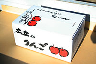 ふじ(お徳用・10キロ箱)
