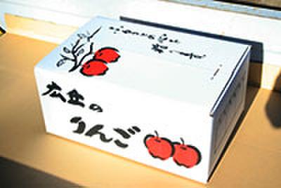 ⑤ ふじ(10キロ箱)