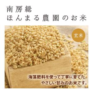 コシヒカリ農薬不使用 5kg (玄米)