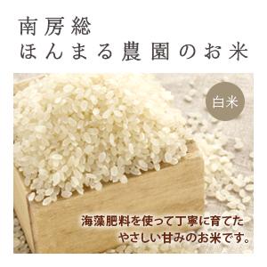 コシヒカリ農薬不使用 5kg (白米)