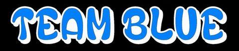 Team Blueステッカー 大