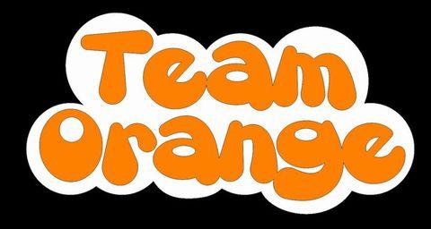 Team Orangeステッカー 中