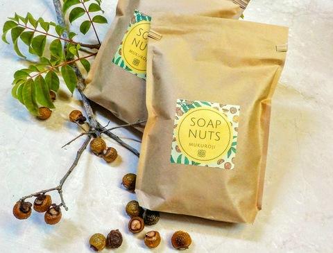 国産ソープナッツ/まるごと種あり600g(果皮にして240g)