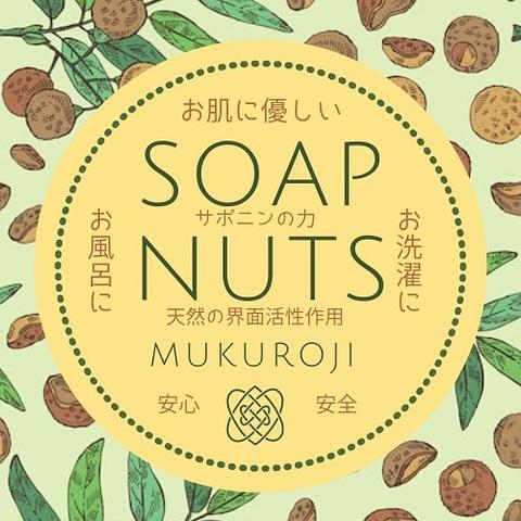 国産ソープナッツ/まるごと種あり 900g(果皮にして360g)