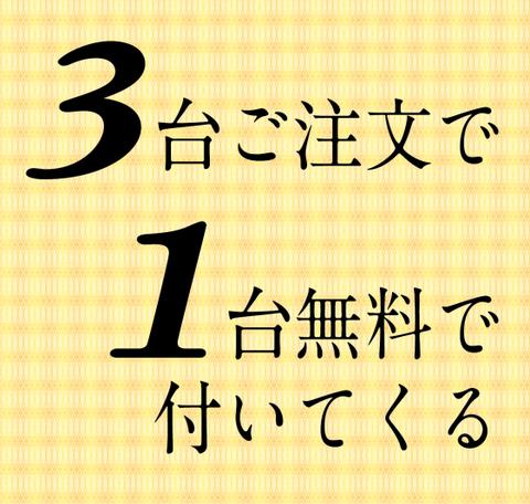 ★特別クーポン★3台買うと1台無料で付いてくるキャンペーン(有効期限 31.4.15ご入金分まで)