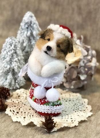2018クリスマス*ブーツパピーシェルティ