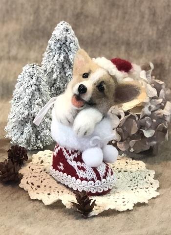 2018クリスマス*ブーツパピーコーギーB
