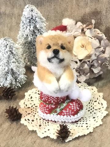 2018クリスマス*ブーツパピーシバ