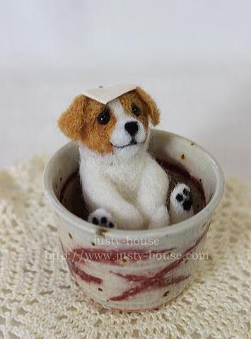 壺風呂わんこ*ジャックラッセルテリア
