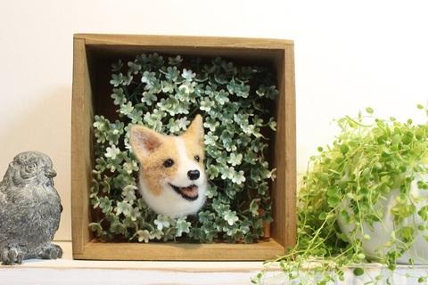 HELLOボックス