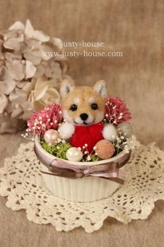 2016バレンタイン*ハートwithフラワー 柴犬