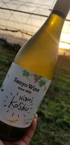 Sanyo 【にごり甲州】