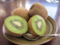 キウイフルーツ 約12個入り (送料込み)