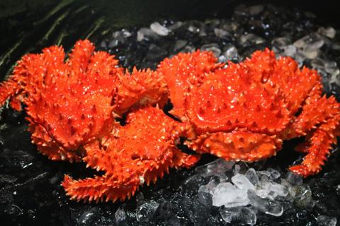 浜茹で花咲がにオス・メスセット(オス1kg前後、メス1kg前後)チルド