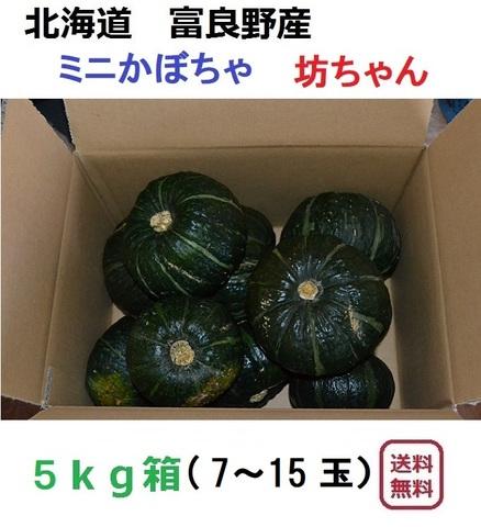 ミニかぼちゃ 坊ちゃん 5kg(7~15玉入)