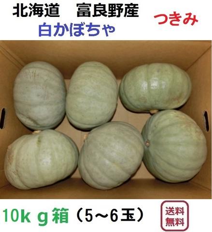 白かぼちゃ つきみ10kg(5~6玉入)