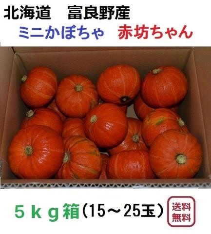 ミニかぼちゃ(赤)坊ちゃん5kg(15~25玉入)