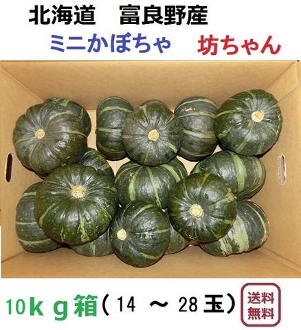 ミニかぼちゃ 坊ちゃん10kg(14~30玉入)