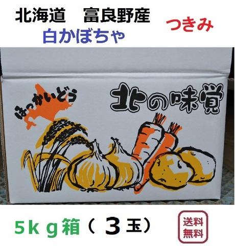 白かぼちゃ つきみ5kg(3玉入)