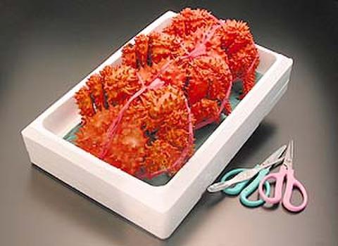 花咲蟹 3尾入れ 大中 約2.2kg