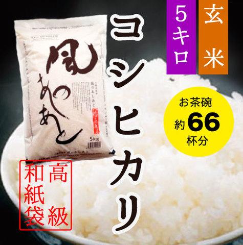 5kg・玄米・コシヒカリ