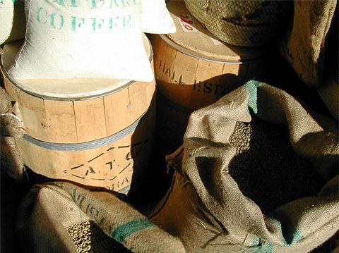 6種類のグルメ珈琲生豆お試しセット(200gX6=1200g)
