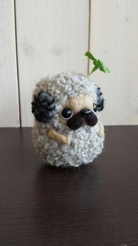 羊パグ フォーン