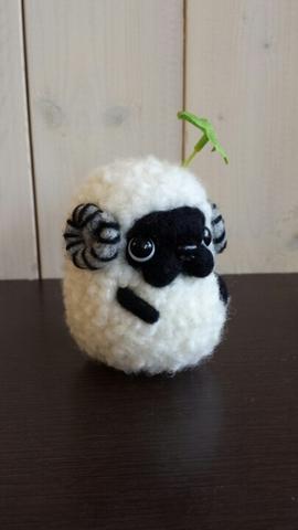 羊パグ 黒