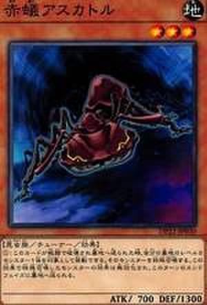 赤蟻アスカトル N [DP22-JP030]