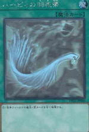 ハーピィの羽根帚 HR [DP21-JP000]