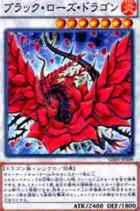 ブラック・ローズ・ドラゴンN [GS05]