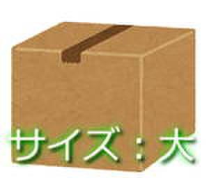 遊戯王「ZeroAsh 在庫処分BOX(大)日本語のみ」(1人1BOX限定)
