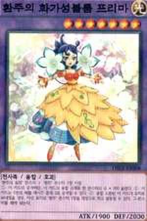 幻奏の華歌聖ブルーム・プリマ  韓国N [DBLE-KRS008]