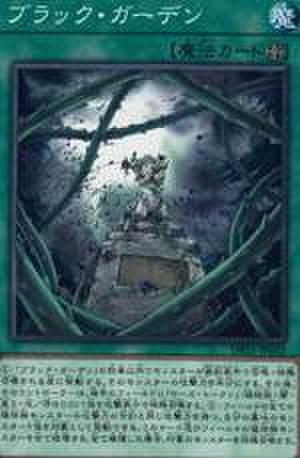 ブラック・ガーデン N [DP21-JP023]
