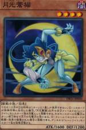 月光蒼猫 N [DP21-JP050]
