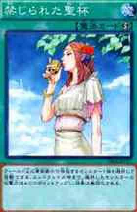 禁じられた聖杯 N [GS05]