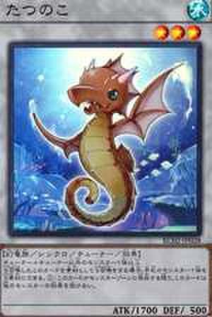 たつのこ SR [RC02-JP028]