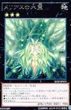 メリアスの木霊 R [SHSP]